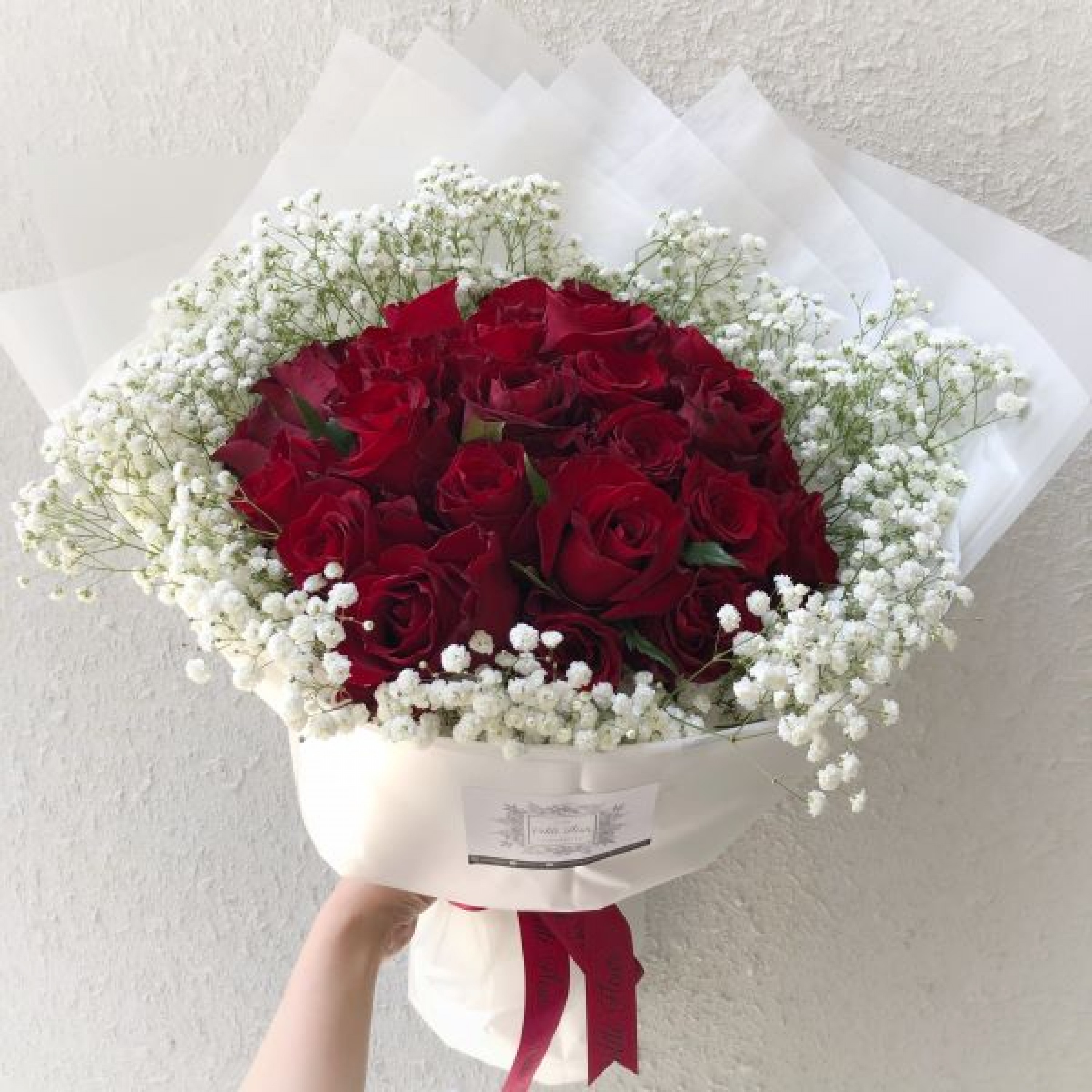 36 Premium Roses with Gypsophila